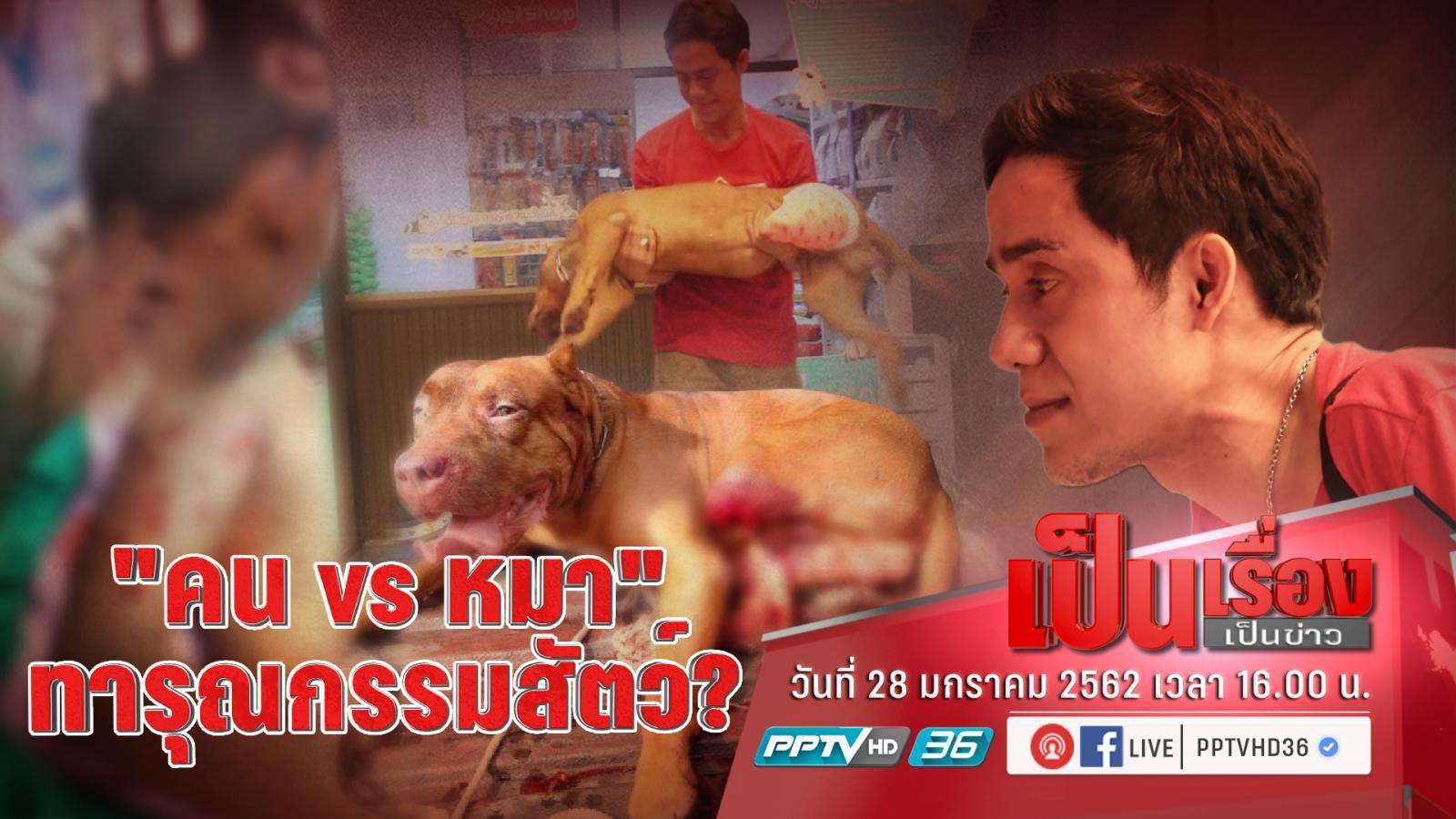 """""""ทนายเดชา"""" แนะ คนถูกสุนัขจรจัดกัด ให้ฟ้อง """"เทศบาล – ปศุสัตว์"""" เป็นคดีตัวอย่าง"""