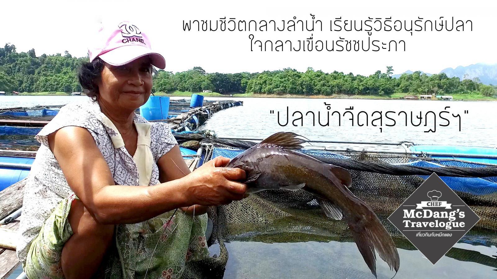 ปลาน้ำจืดสุราษฎร์ฯ