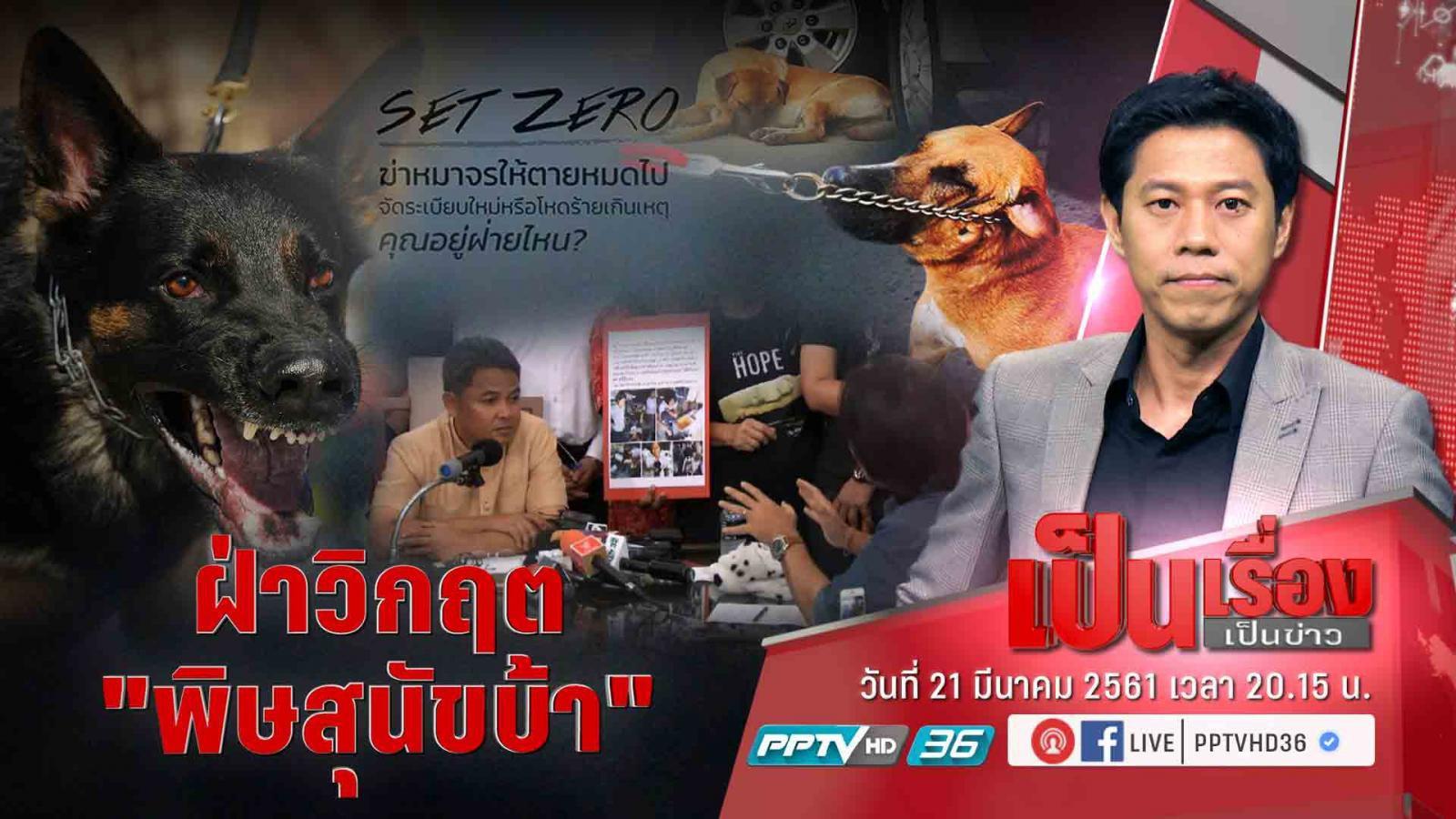 """""""กลุ่มคนรักสัตว์"""" ขวาง """"SET ZERO"""" หมาจรจัด เพราะไทยเป็นเมืองพุทธ"""