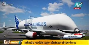 """เครื่องบินคล้ายปลาวาฬ """"แอร์บัส เบลูกา เอ็กซ์แอล"""" เข้าประจำการ"""