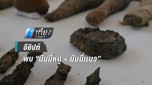 """อียิปต์ พบ """"มัมมี่หนู – มัมมี่แมว"""""""