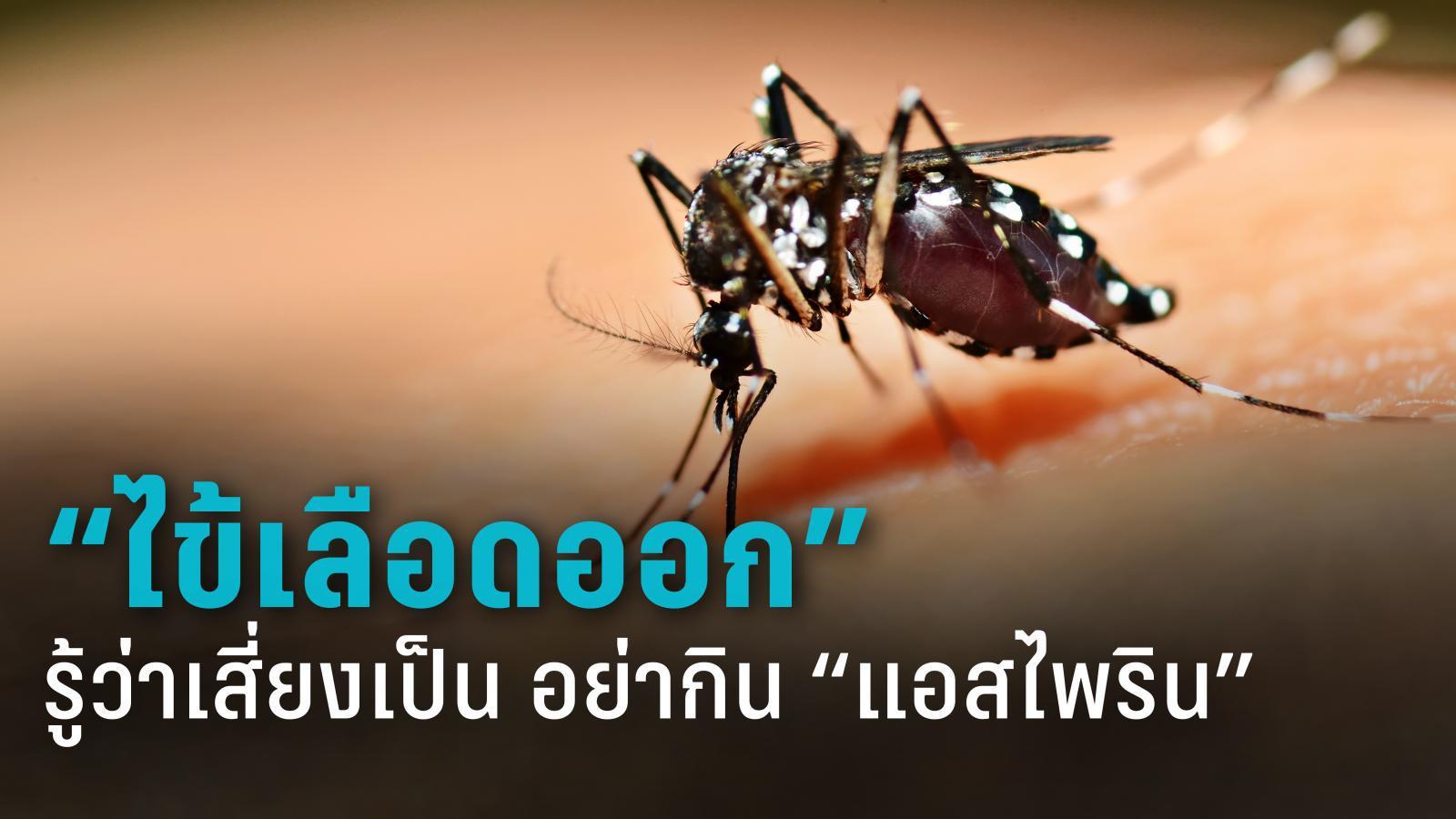 """เตือนภัยหน้าฝน คนไทยป่วย """"ไข้เลือดออก"""" กว่า 3 หมื่นรายใน 7 เดือน"""