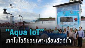 """Aqua IoT"" เทคโนโลยีสมัยใหม่ สนับสนุนภาคเกษตรเพาะเลี้ยงสัตว์น้ำ"