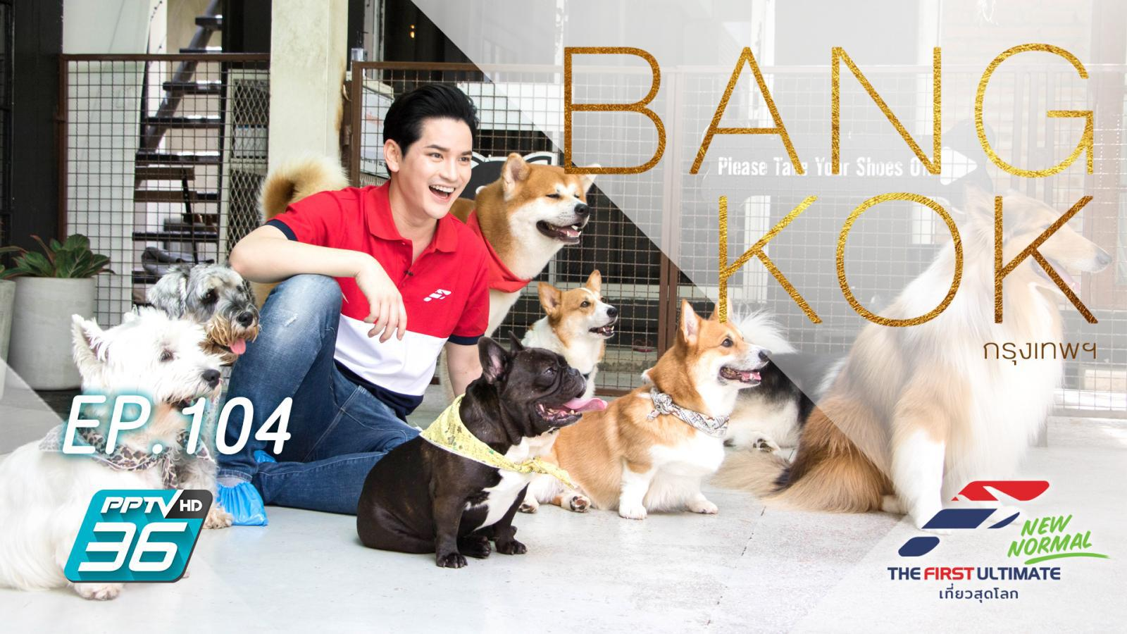 Bangkok, Thailand (เต๋าพาเที่ยวคาเฟ่หมา)