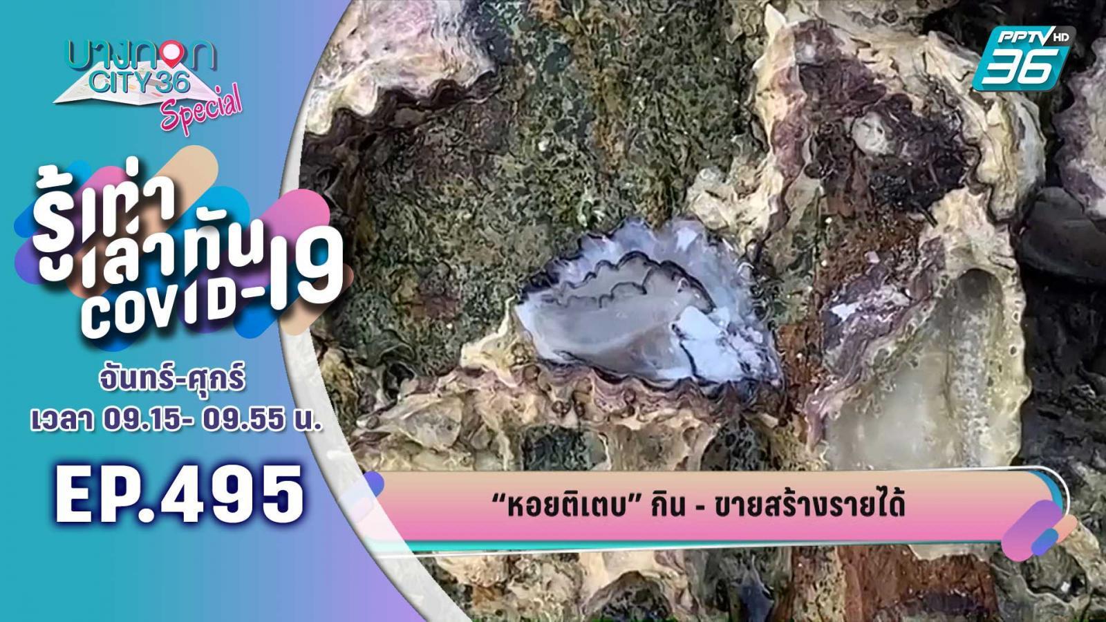 ชาวเกาะลิบง แงะหอยติเตบ กิน – ขาย สร้างรายได้ ช่วงมรสุม