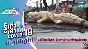 บางกอกซิตี้ เลขที่ 36 | แก้เผ็ดลิงช่างรื้อ ด้วยการนำจรเข้ตั้งบนหลังคารถ | PPTV HD 36