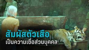 คุ้มเสือแจง นทท.สัมผัสตัวเป็นความเชื่อฯ ยันมี จนท.ดูแลไม่ห่าง