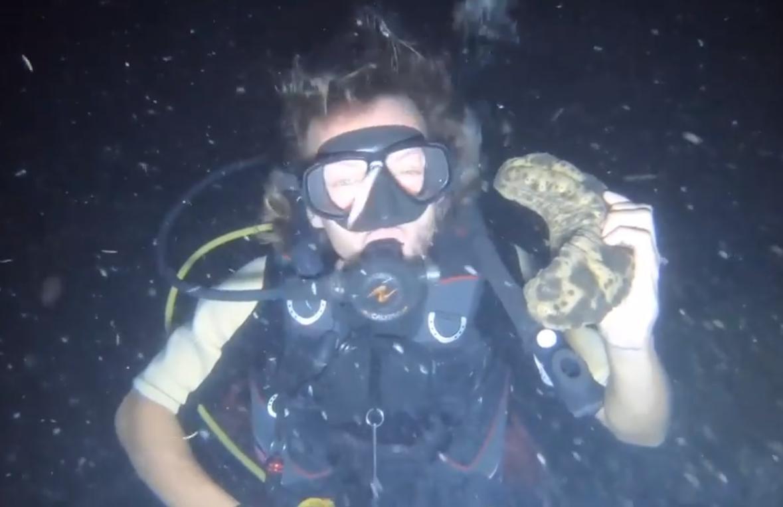 แชร์ว่อน! SAVEเกาะพะงัน อย่าหาทำคลิปนักดำน้ำต่างชาติจับปลาดาว ปักเป้าบีบให้พองถ่ายรูปเล่นสนุกสนาน