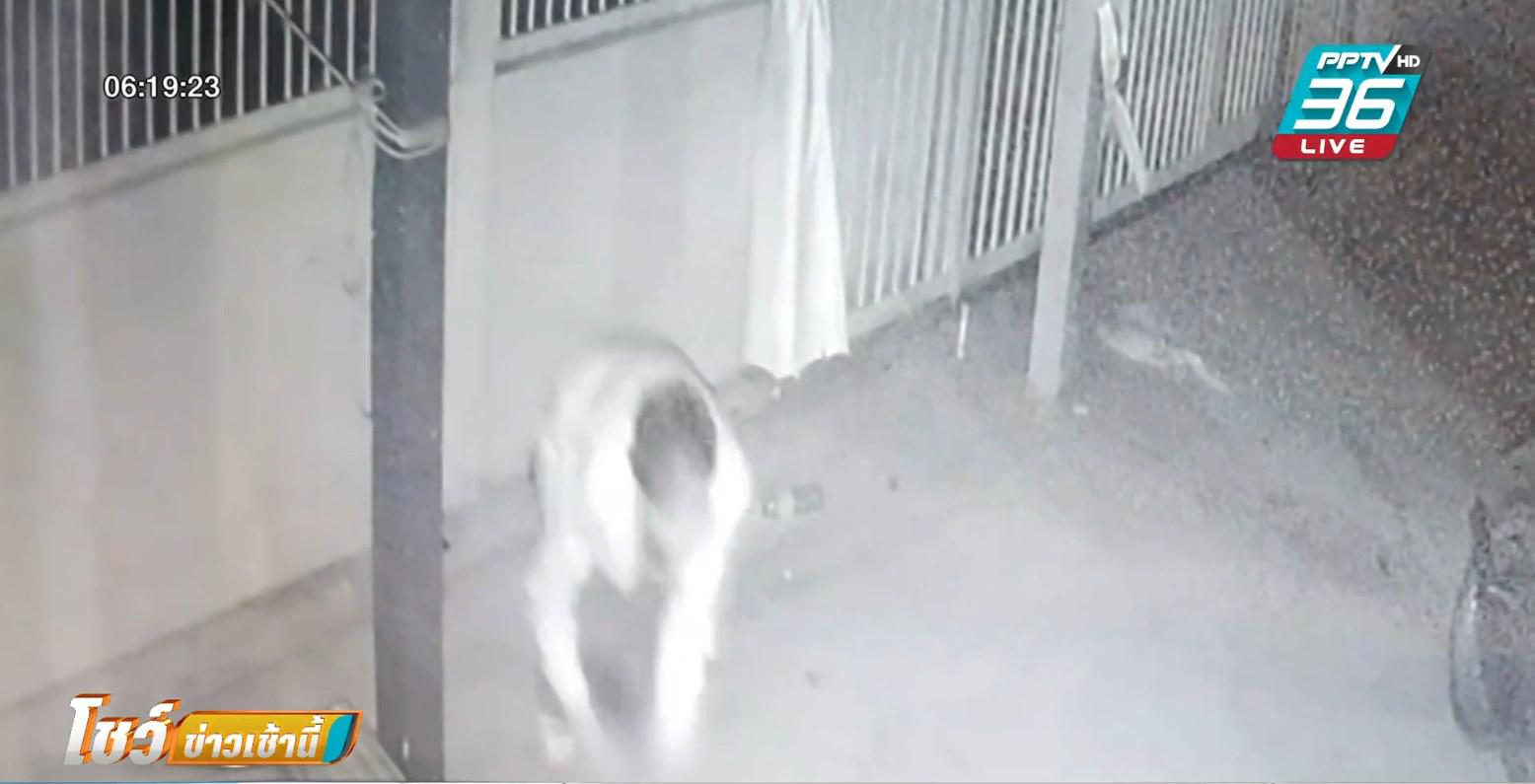วงจรปิดจับภาพ มือปืนแอบนั่งข้างรั้ว ยิงชายวัย 67 ปี รอดรั้วบ้าน