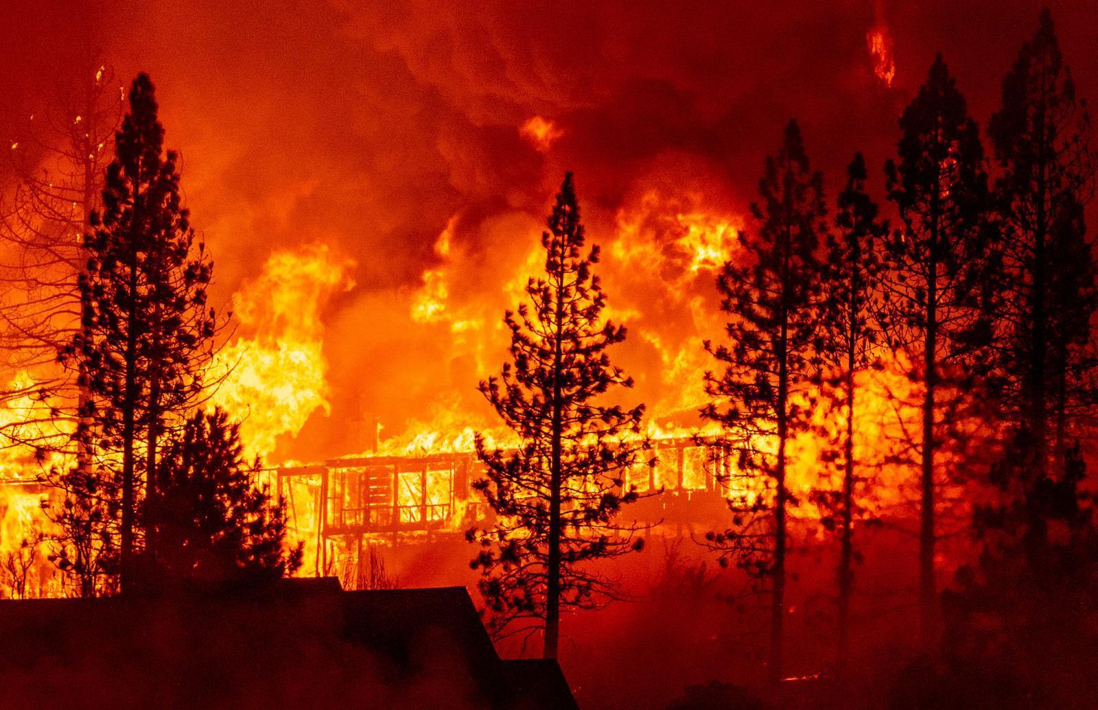 เร่งอพยพคนและสัตว์ หลังไฟป่าแคลิฟอร์เนียทุบสถิติกินพื้นที่มากกว่า 8,000 ตร.กม.