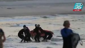 นักโต้คลื่นออสซี่ ถูกฉลามกัดเสียชีวิตในหาดท่องเที่ยว