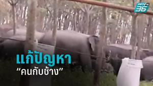 """""""โครงการพัชรสุธาคชานุรักษ์"""" แก้ปัญหาคนกับช้าง"""