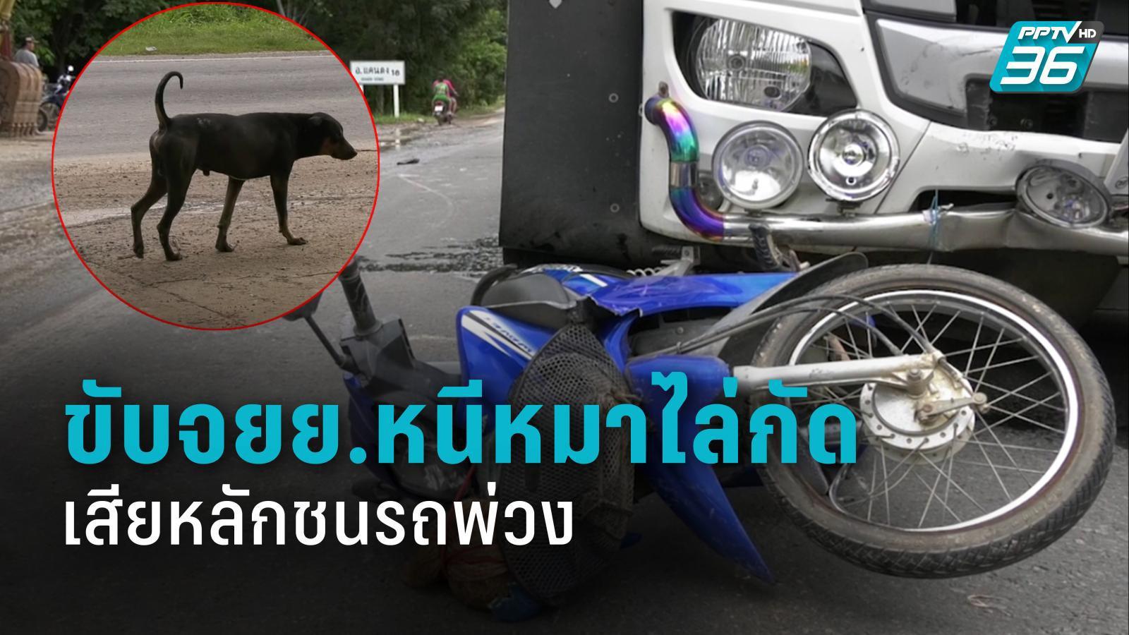 พ่อเฒ่าวัย 75 ปี ขับจยย.หนีหมาไล่กัด เสียหลักชนรถพ่วงเสียชีวิตแล้ว