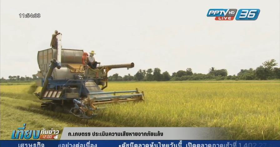 ก.เกษตรฯ พบพื้นที่การเกษตรเสียหายจากภัยแล้งกว่า 1 หมื่นล้าน