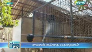 สัตว์ป่าในสถานีเพาะเลี้ยง จ.ราชบุรี ขาดน้ำ