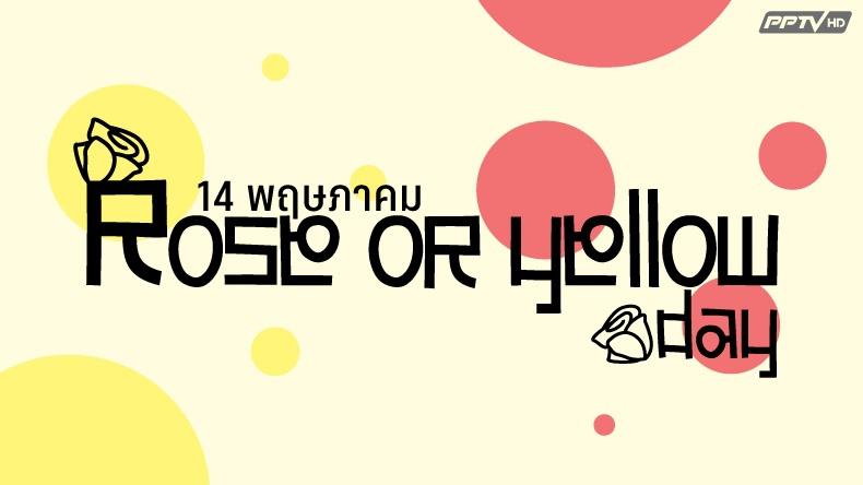 14พ.ค.วันรักพิเศษสไตล์แดนกิมจิ คนโสดกินแกงกะหรี่ รักกันดีได้ดอกกุหลาบ