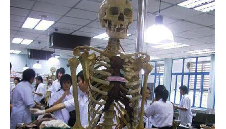 อาจารย์ใหญ่ ผู้อุทิศร่างกายเป็นตำรา (การจากไปที่ไม่เคยสูญสิ้น)