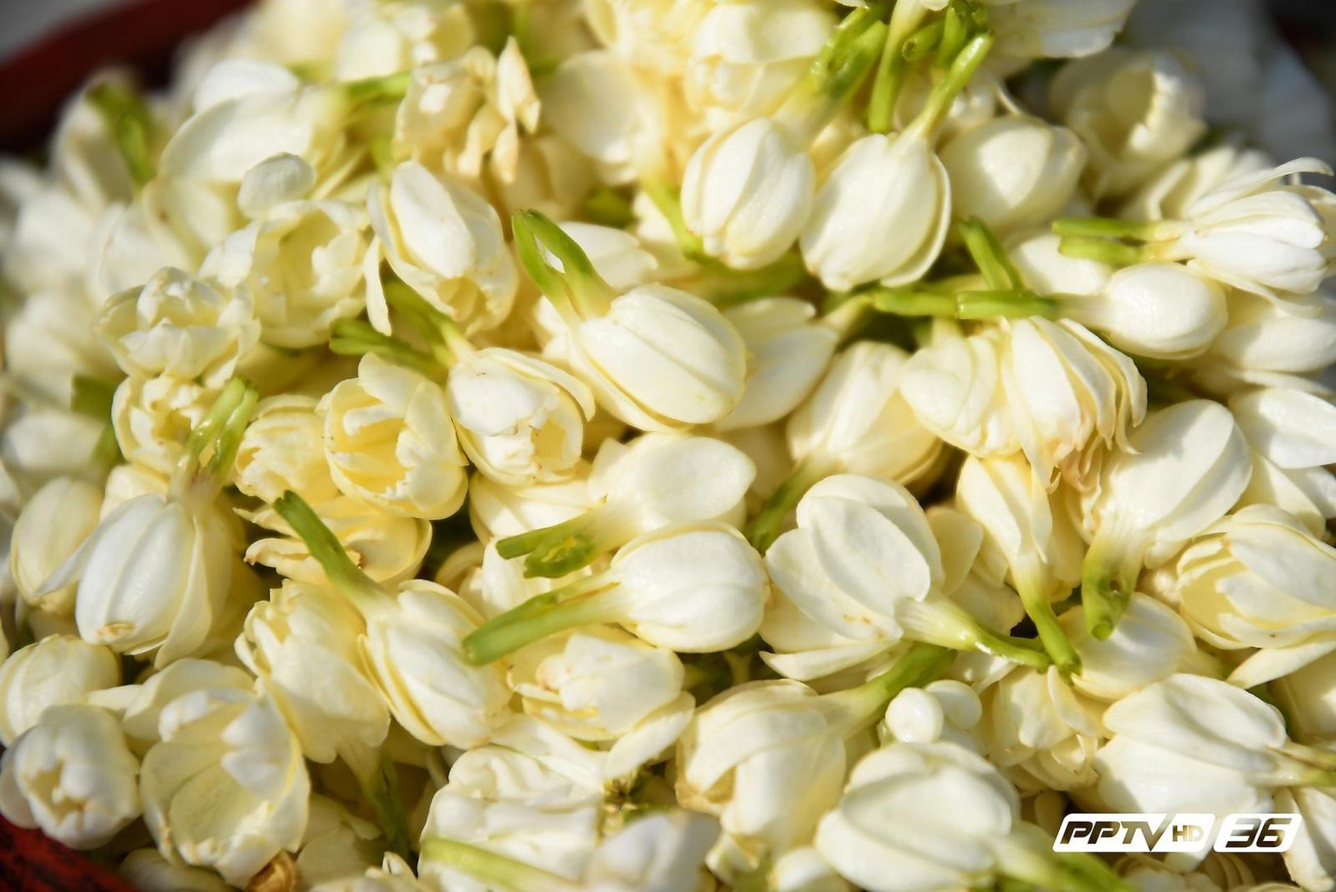 """บุหงา""""สราญรมย์"""" ดอกไม้ของพ่อ จิตอาสารวมใจกันนำดอกไม้แสดงความอาลัยบริเวณริมกำแพงพระบรมมหาราชวัง มาอบแห้งใส่ถุงที่ระลึกโดยใช้ชื่อว่า """"บุหงา สราญรมย์ ดอกไม้ของพระราชาให้เป็นของที่ระลึกประชาชนที่เดินทางมาสักการะพระบรมศพ"""