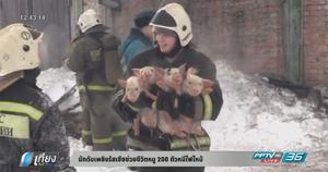 นักดับเพลิงรัสเซียช่วยชีวิตหมู 200 ตัวหนีไฟไหม้