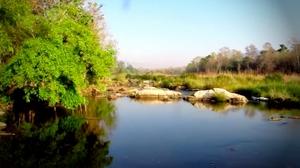 มูลนิธิสืบฯ แนะทางเลือกบริหารจัดการน้ำป่าแม่วงก์ถูกกว่าสร้างเขื่อน 6 เท่า