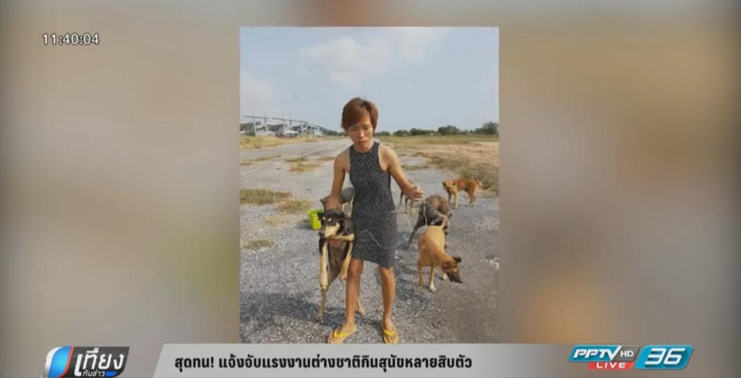 สุดทน! แจ้งจับแรงงานต่างชาติกินสุนัขหลายสิบตัว