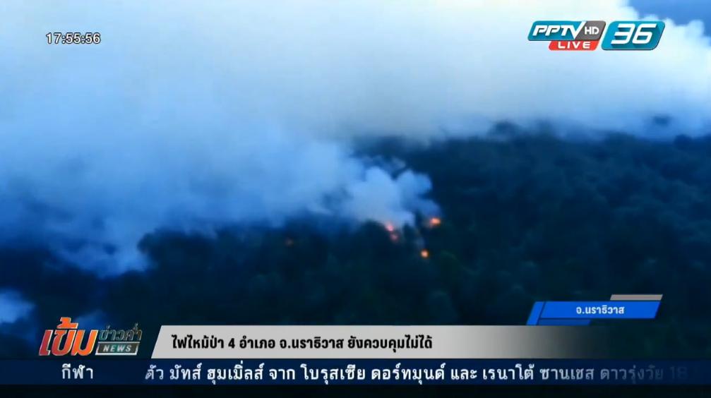 ไฟไหม้ป่า 4 อำเภอ จ.นราธิวาส ยังควบคุมไม่ได้