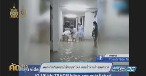 พยาบาลเวียดนามไล่จับปลาไหล หลังน้ำท่วมโรงพยาบาล (คลิป)