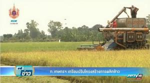 กระทรวงเกษตรฯเดินหน้าปรับโครงสร้างผลิตข้าว ลดพื้นที่ปลูก-ยกระดับราคาข้าวสาร