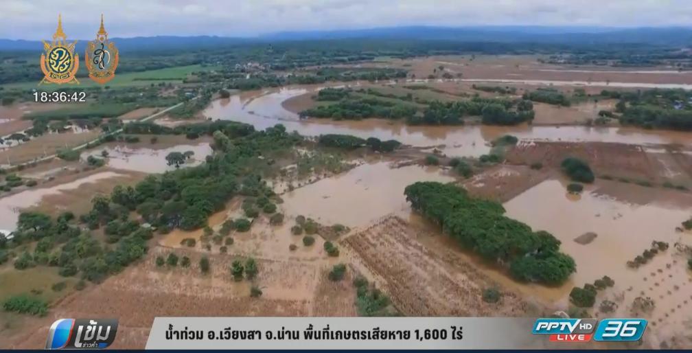 น้ำท่วม อ.เวียงสา จ.น่าน พื้นที่เกษตรเสียหาย 1,600 ไร่ (คลิป)