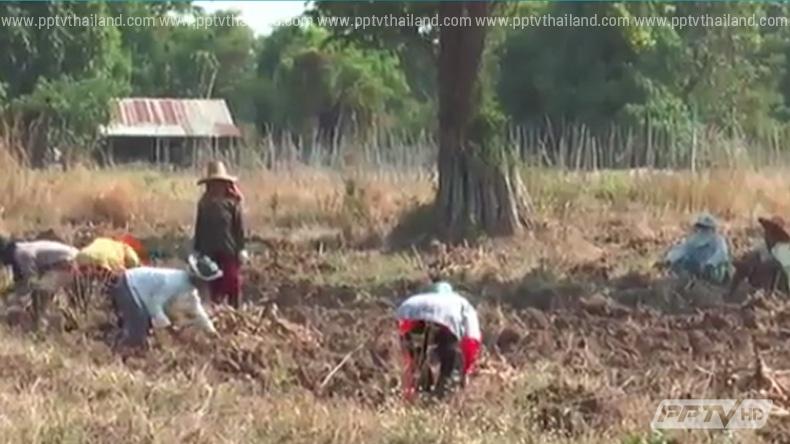 ชาวบ้านบุรีรัมย์ฮือค้านสร้างโรงงานผลิตแป้งมันติดลำน้ำมาศ