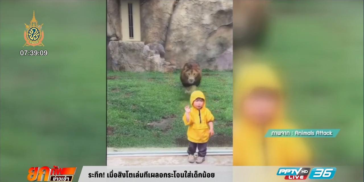 ระทึก! เมื่อสิงโตเล่นทีเผลอกระโจนใส่เด็กน้อย (คลิป)