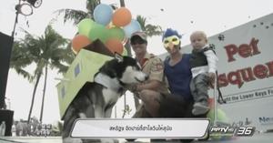 สหรัฐฯ จัดปาร์ตี้ฮาโลวีนให้สุนัข (คลิป)