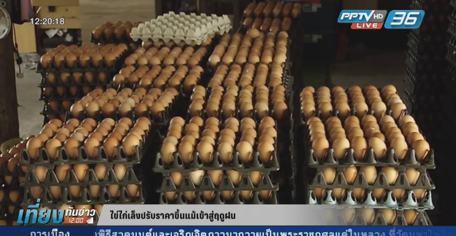 ไข่ไก่เล็งปรับราคาเพิ่มขึ้นแม้เข้าสู่ฤดูฝน