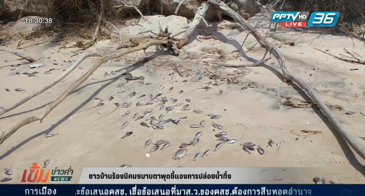 """ชาวบ้านเชื่อ """"ปลาตาย หาดตากวน"""" เหตุจากน้ำเสีย"""