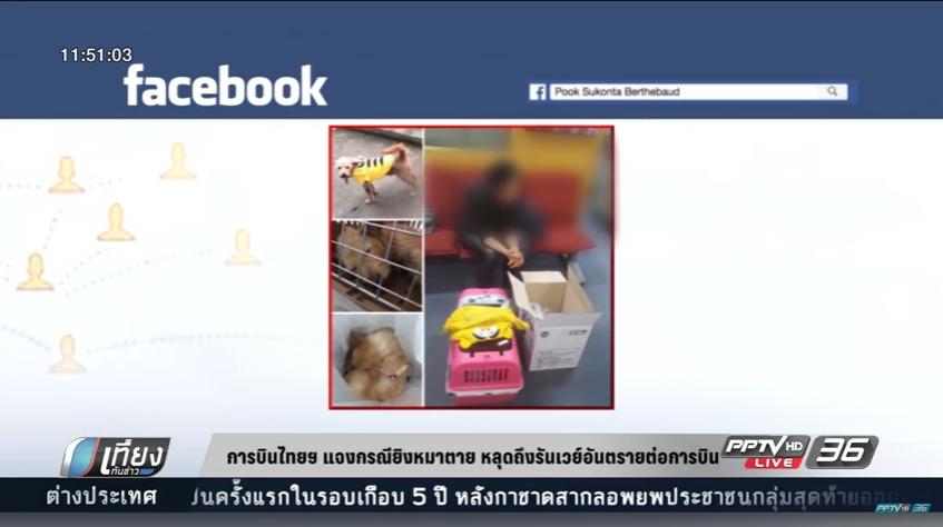 การบินไทยแจงกรณียิงหมาตาย หลุดถึงรันเวย์อันตรายต่อการบิน (คลิป)