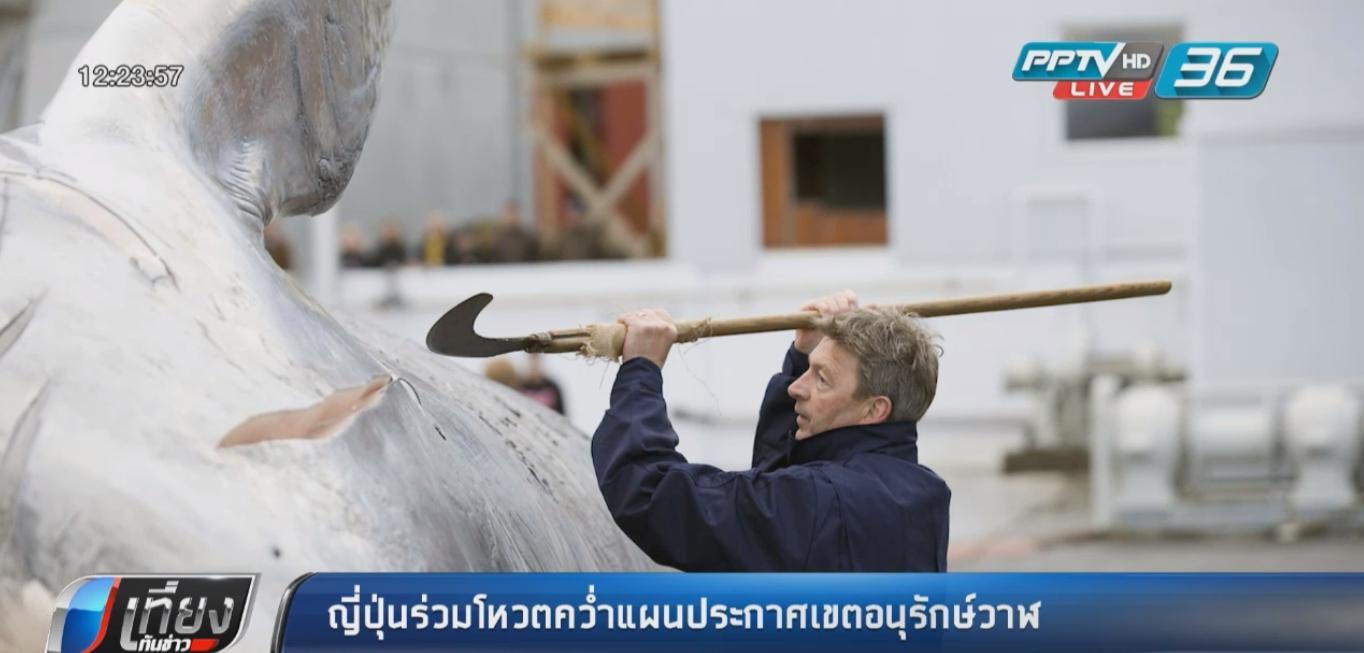 """ญี่ปุ่นร่วมโหวตคว่ำแผนประกาศเขตอนุรักษ์ """"วาฬ"""""""