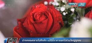 ปากคลองตลาดไม่คึกคัก แม้ปีนี้ราคาดอกไม้ส่วนใหญ่ถูกลง