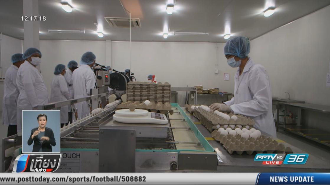 เฮ! คนไทยจะมีโรงงานผลิตวัคซีนหวัดใหญ่แห่งแรกปี 63