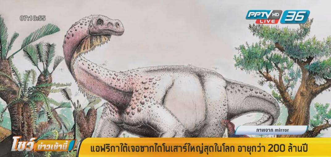 แอฟริกาใต้เจอซากไดโนเสาร์ใหญ่สุดในโลก อายุกว่า 200 ล้านปี