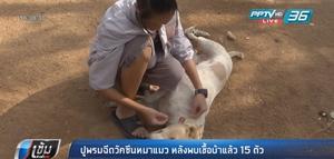 ปศุสัตว์มหาสารคาม ปูพรมฉีดวัคซีนหมา-แมว หลังพบเชื้อพิษสุนัขบ้า 15 ตัว