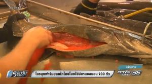 โจรบุกฟาร์มฮอกไกโดขโมยไข่ปลาแซลมอน 200 ตัว