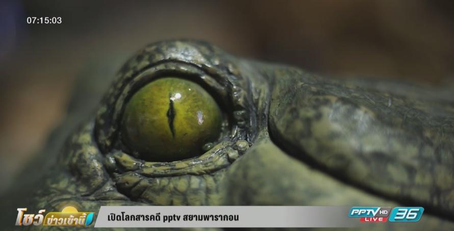 เปิดโลกสารคดี PPTV สยามพารากอน