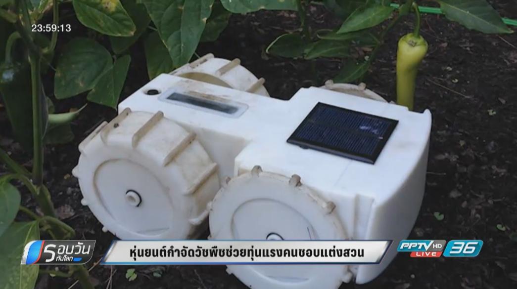 หุ่นยนต์กำจัดวัชพืชช่วยทุ่นแรงคนชอบแต่งสวน
