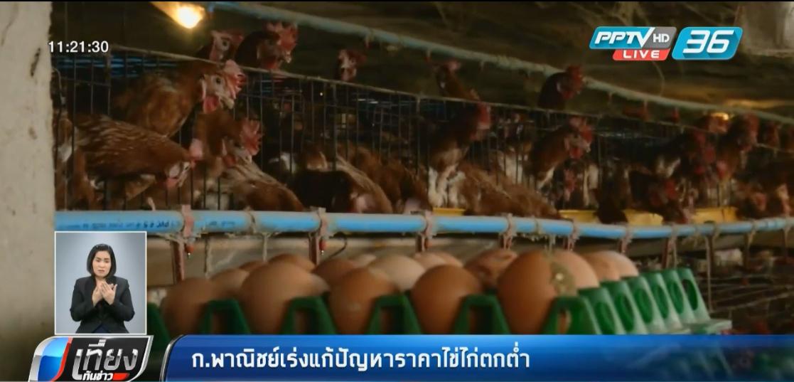 เล็งของบ 140 ล้าน ดึงไข่ไก่ออกจากระบบแก้ปัญหาราคาร่วง