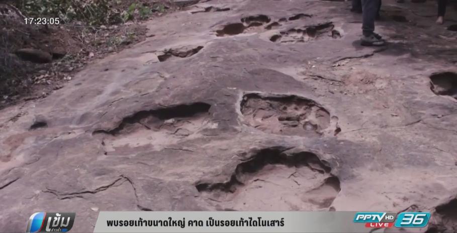 พบรอยเท้าขนาดใหญ่ คาด เป็นรอยเท้าไดโนเสาร์