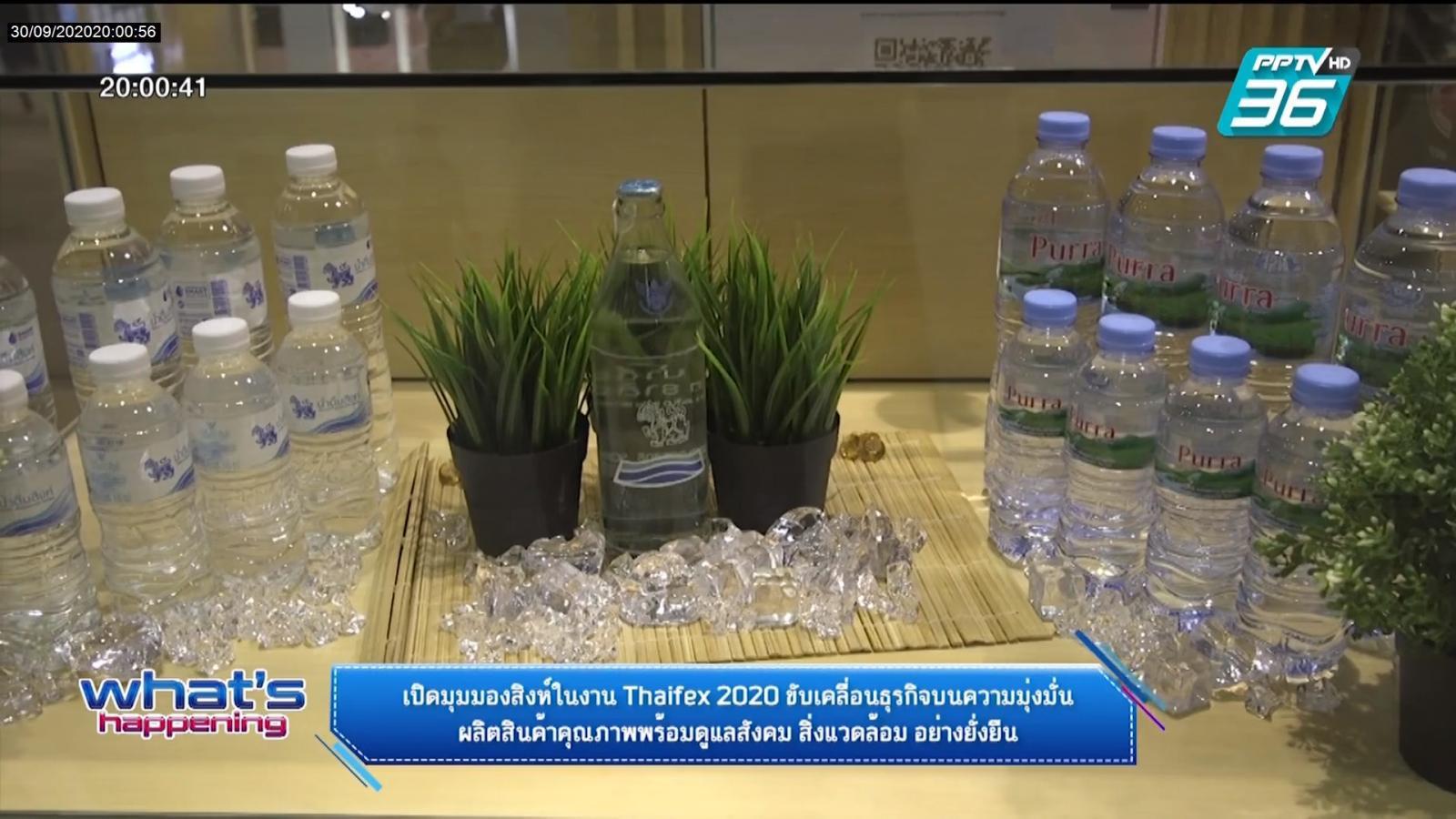 เปิดมุมมองสิงห์ในงาน Thaifex 2020