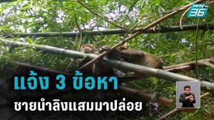 แจ้ง 3 ข้อหาชายนำลิงแสมมาปล่อยในพื้นที่สุพรรณบุรี
