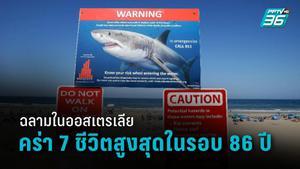 ทุบสถิติรอบ 86 ปี ฉลามในออสเตรเลียคร่าชีวิตคน 7 ราย
