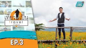 เที่ยวเป็น Travel Intrend EP.3 | ตอน สุพรรณบุรี | 19 ต.ค. 63