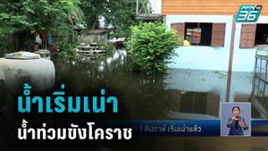 น้ำท่วมขัง ชุมชนพิมายกว่า 1 สัปดาห์ น้ำเริ่มเน่า